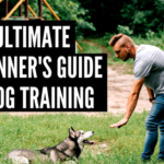 The Ultimate Beginners Guide to Dog Training - The Dog Training Secret